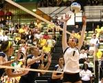 Junior Molly Kreklow sets the ball as two Michigan players look on. Kreklow had 143 assists for the tournament.